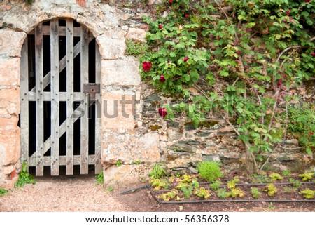 door and rose