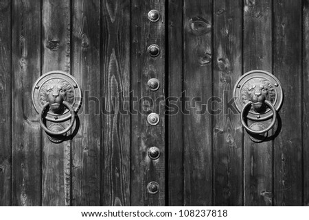 doorknocker like head of lion black and white
