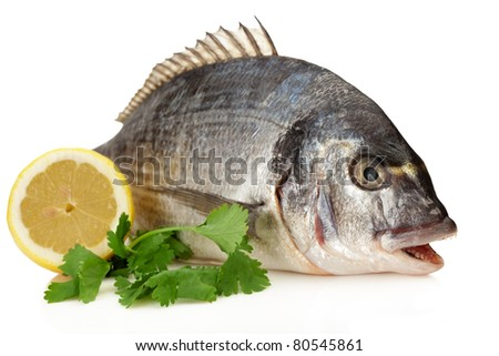 Dorado Fish garnished with Parsley and lemons ready for the pan or the grill