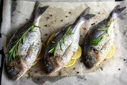 Dorado on a baking sheet is sent to the oven. Dorado fish