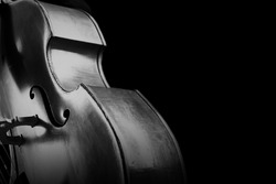 Double bass. Contrabass classical music instrument. Close up cello