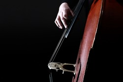 Double bass strings. Hands playing contrabass player. String musical instrument.