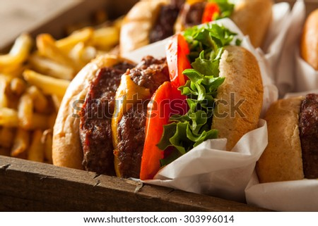 Double Cheeseburgers and French Fries in a Tray