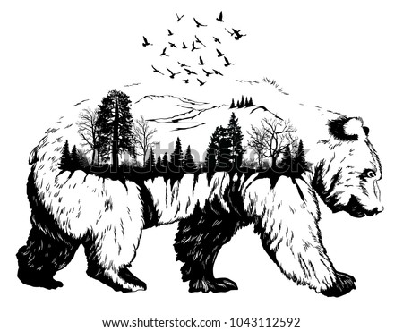 Double exposure, Hand drawn bear for your design, wildlife concept. Raster version