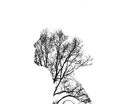 Double exposure illustration. Woman silhouette with trees