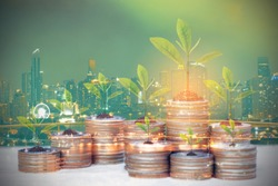 Double exposure of Trees growing on coins money on city background for Real estate investments and business concept