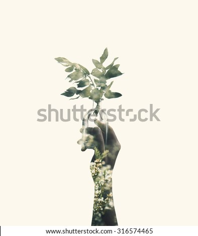 Double exposure with hand holding glass jar with branch plant