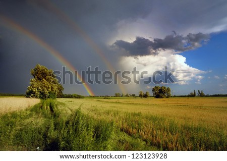 double rainbow in the stormy dark skyand a lone tree in nature and a lone tree in nature