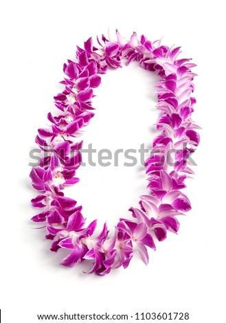 Double Strand Hawaii flowers lei necklace made from  Orchid Flower, Dendrobium Hybrid Pink, from Thailand on white background.