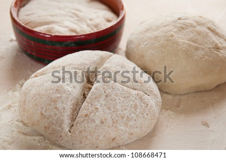 dough with sourdough