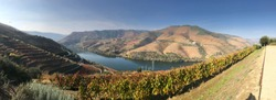 Douro Valley in Portugal Panorama