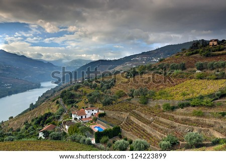Douro Vineyard, Portugal, Europe