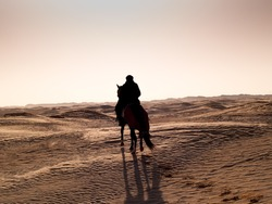Douz, Tunisia, Arabian knight in the desert at sunset in the dunes and sand silhouetted against the light