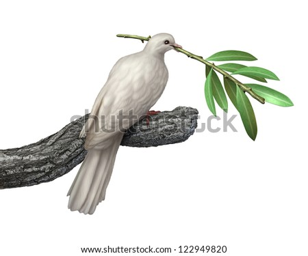 Dove holding an olive branch isolated on a white background as a symbol of peace and tranquility and hope for the future of humanity on the journey for human rights and freedom.