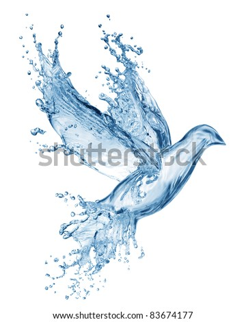 dove made out of water splashes ...