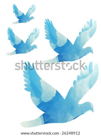 doves colored with sky and clouds flying