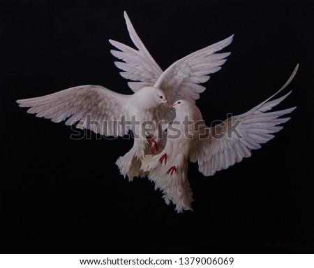 Doves in sky #1379006069