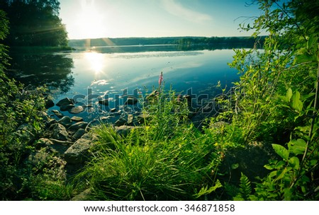 Down at the lake at the golden hour with summer tree leaves