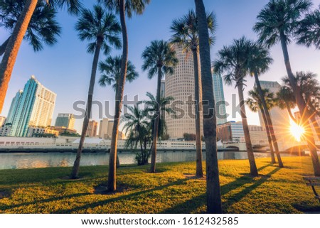 Downtown of Tampa. Tampa, Florida, USA. Foto stock ©
