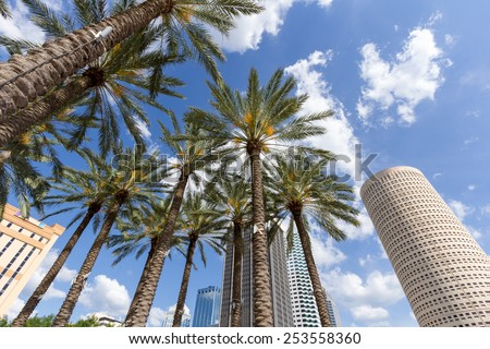 Downtown Tampa, Florida daytime Foto stock ©