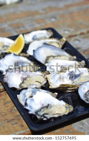 Dozen fresh oysters with lemon wedge at Kangaroo Island, Australia