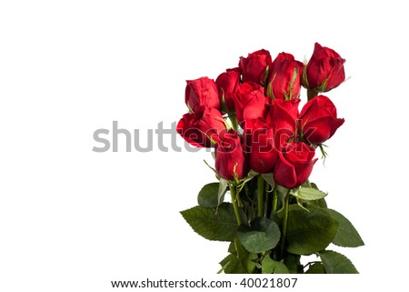 Dozen red roses isolated on white background - stock photo