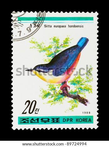DPR KOREA - CIRCA 1988: a stamp printed by DPR KOREA shows birds, series animals, circa 1988