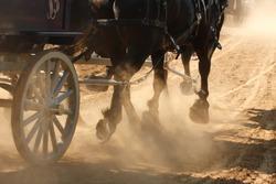 Draft horses pulling a wagon through a dusty field.