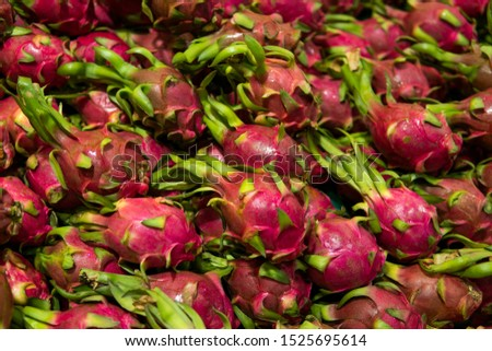 Dragon fruit with a lots of dragon fruit on a background. Dragon fruit or pitaya. Tropical and exotic fruits. Healthy and vitamin food concept.