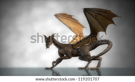 dragon isolated om fog background