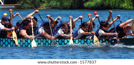 Dragonboat rowers in action.