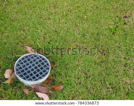 drainage in the lawn #784336873