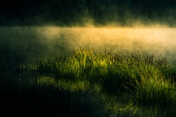 Dramatic, artistic scenery of a sunrise over flooded wetlands in Northern Europe. Springtime swamp with mist and colors. Beautiful scenery in the spring morning.