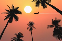 Dramatic atmosphere panorama view of beautiful sunset on twilight sky with silhouette palm trees and aircraft fly over for travel and transportation business presentation and report background.