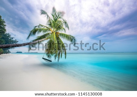 Dramatic beach landscape. Sunset sea and a beautiful palm tree. Dramatic beach concept. Tranquil and inspirational tropical nature view