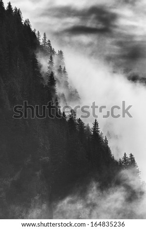 Dramatic Black and White Mountains Forests Fog Fjords Seward Alaska