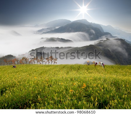 Dramatic clouds with mountain and Daylily flower