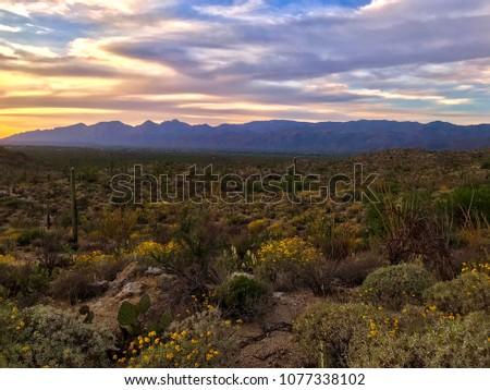 Dramatic Desert Nature #1077338102