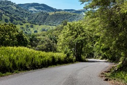 dramatic landscape image of a typical caribbean mountain road in San Jose De Ocoa, Dominican Republic.