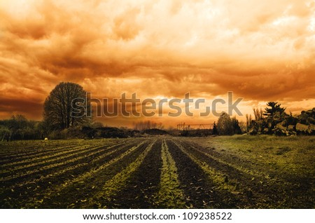 Dramatic landscape with orange clouds