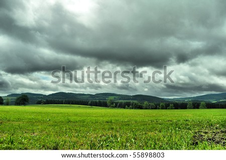 dramatic meadow on summer
