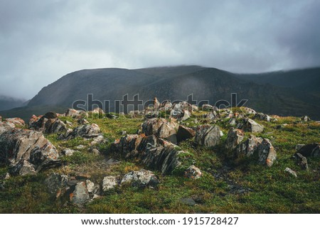 Dramatic mountain landscape with sharp stones with orange lichen on green hill under cloudy sky in rainy weather. Atmospheric alpine scenery with pointy rocks on hill under low clouds in overcast sky. Stockfoto ©