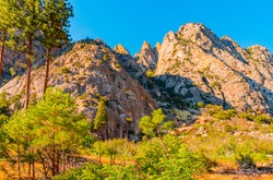 Dramatic mountains jut up to the sky in jagged shapes with pine trees and lush foliage growing in the meadow below in King's Canyon National Park in central California.