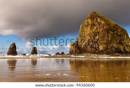 Dramatic seascape of wild and rugged Oregon coastline. Tufted Puffins migration and nesting at Haystack Rock in Cannon Beach.