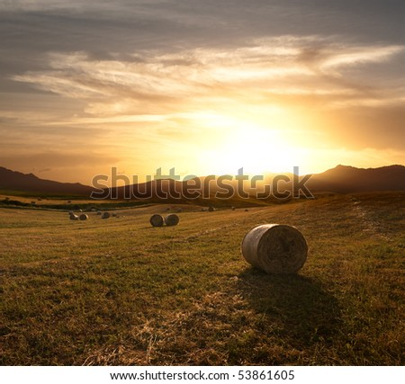 dramatic sky at the sunset over the harvest field of rolls of hay