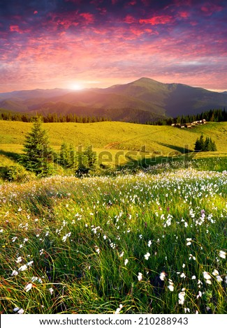 Dramatic summer sunrise in the  mountains  #210288943
