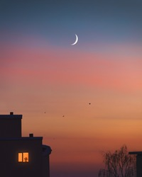Dramatic sunset colors and young moon at the evening sky. Trees, birds and houses silhouette at night. Light in one lonely window. Cozy nightfall at city under crescent moon. Home family atmosphere.