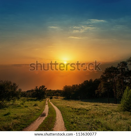 dramatic sunset over road in wood