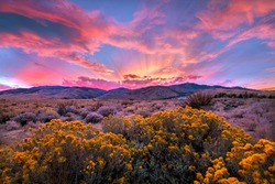 Dramatic Sunset over the Nevada Desert Sagebrush