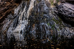 Dramatic Texture On The Wall of Cattail Falls in Big bend national park